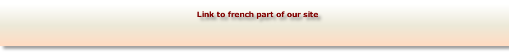 Link to french part of our site